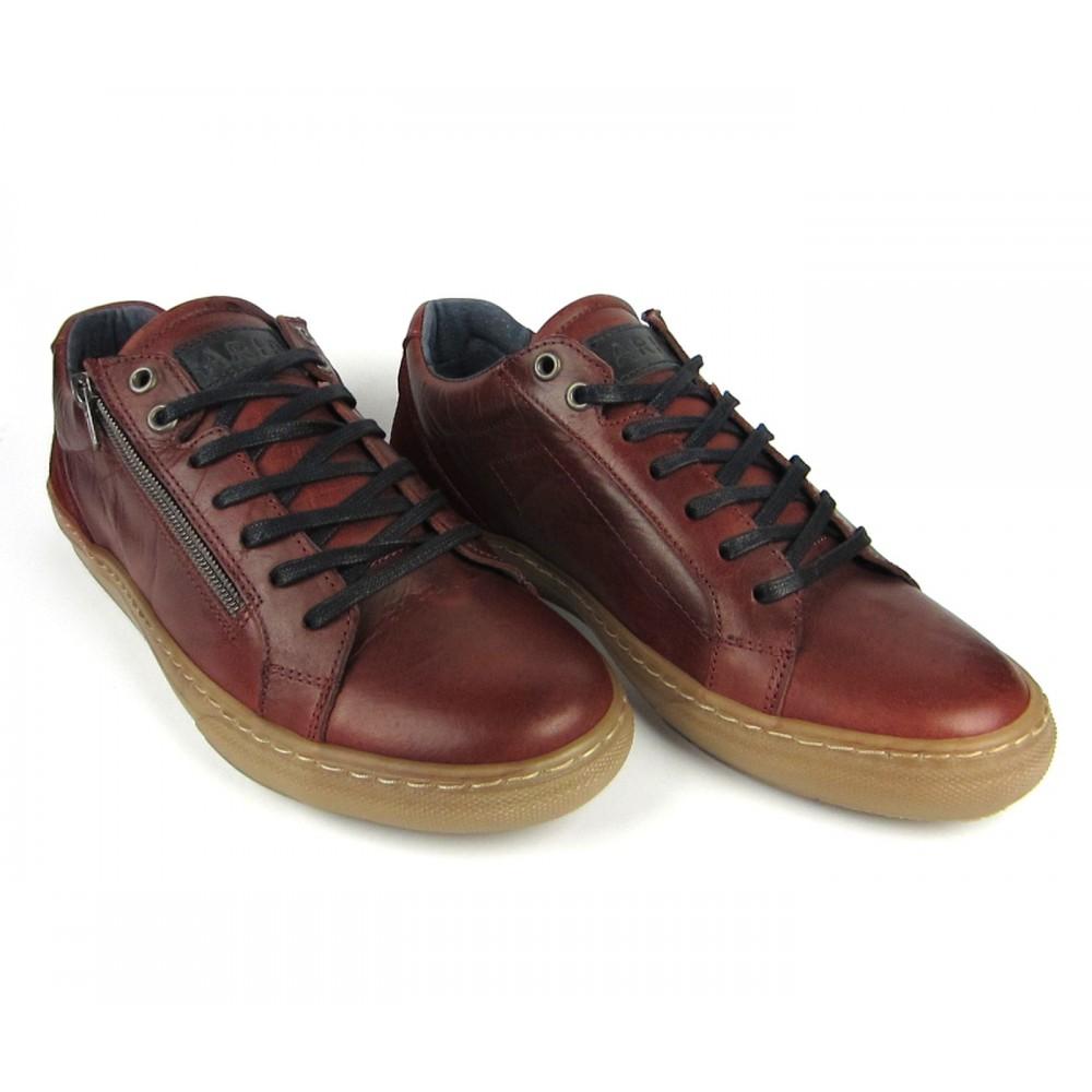 Arid Sneaker Rogue bordeaux